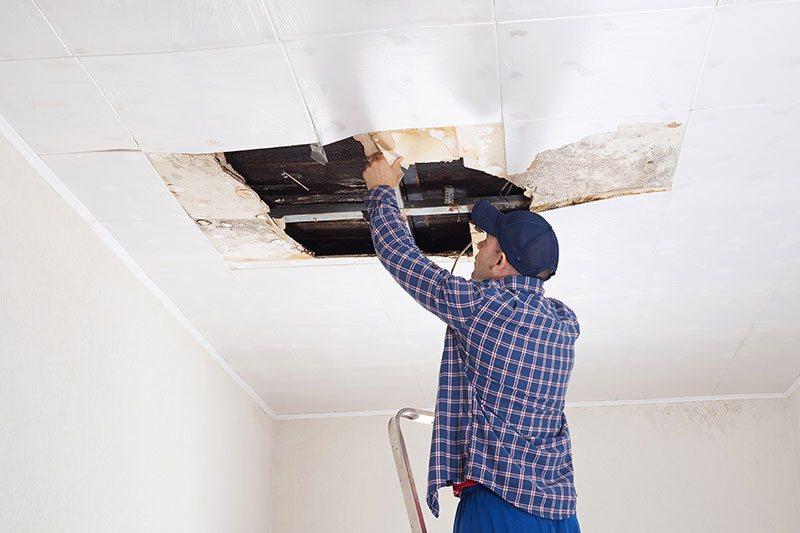 Workman Reparing Roof